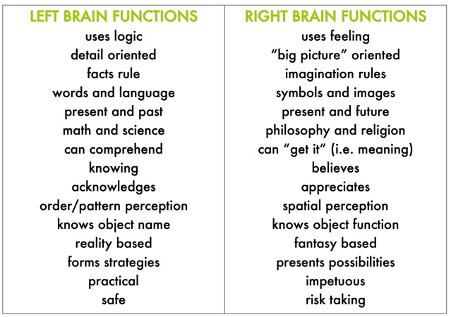 the left and right functions of the human brain The cerebral hemispheres are responsible for higher order functions  sensation  from the left side of the body is processed by the right side of the brain (at the.